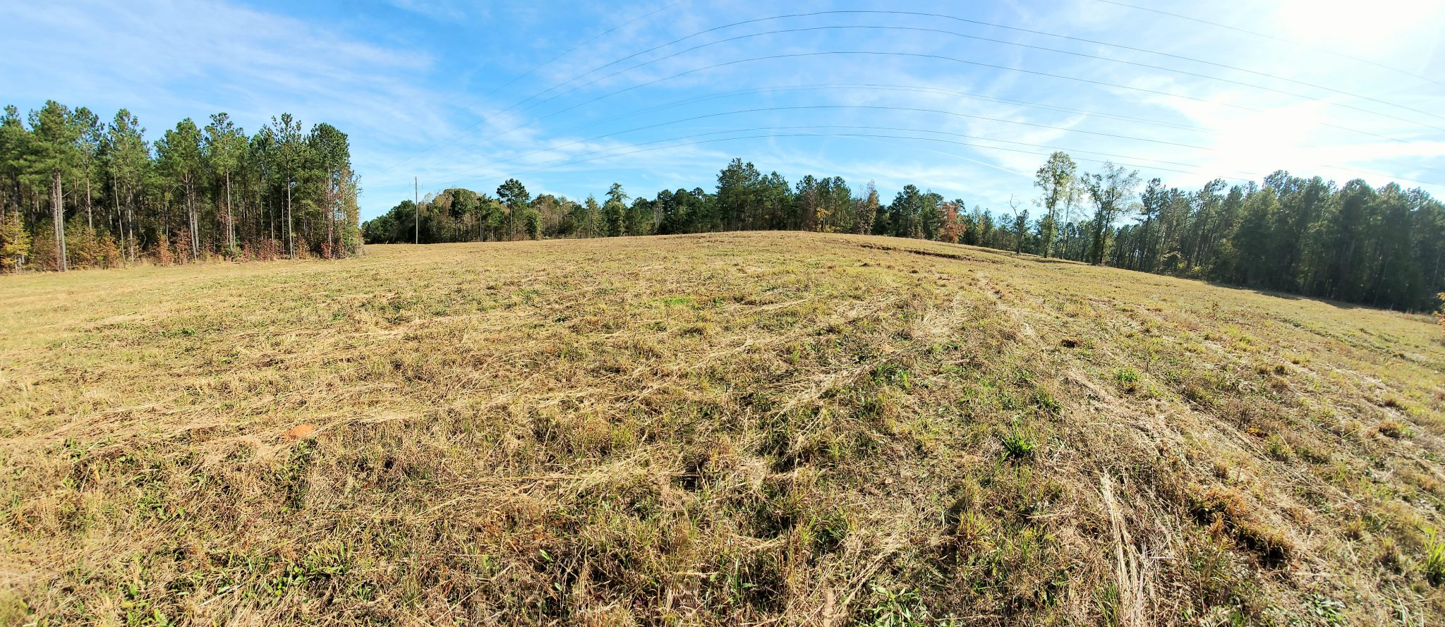 SOLD!! Beautiful 16+/- Acres in Chambers County
